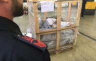 Mazara, Tre tonnellate di pesce sequestrato, mille chili distrutti