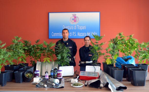 Mazara: Arresto in flagranza di un mazarese per coltivazione e produzione di sostanza stupefacente del tipo marijuana