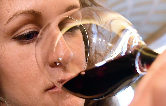 Alcol, con oltre 5-6 bicchieri a settimana sale rischio morte