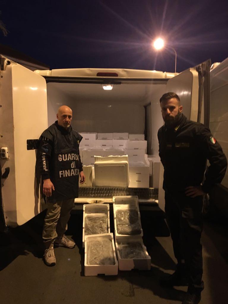 Palermo, pesca di frodo, sequestrati 1920 kg di novellame di sarde