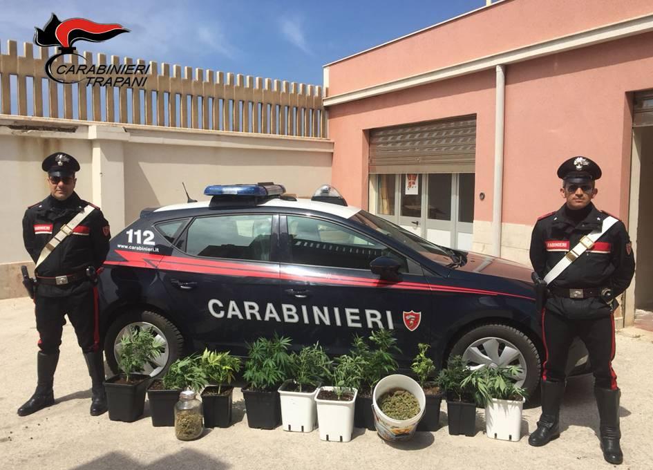 Ballata: piantagione in casa, arrestato cuoco trapanese