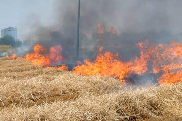 Campobello: «Prevenzione rischio d'incendi, anche quest'anno il sindaco ha emanato un'ordinanza»