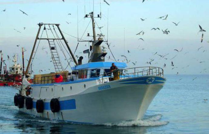 Musumeci presenta un ddl per tutelare la pesca e i prodotti ittici siciliani