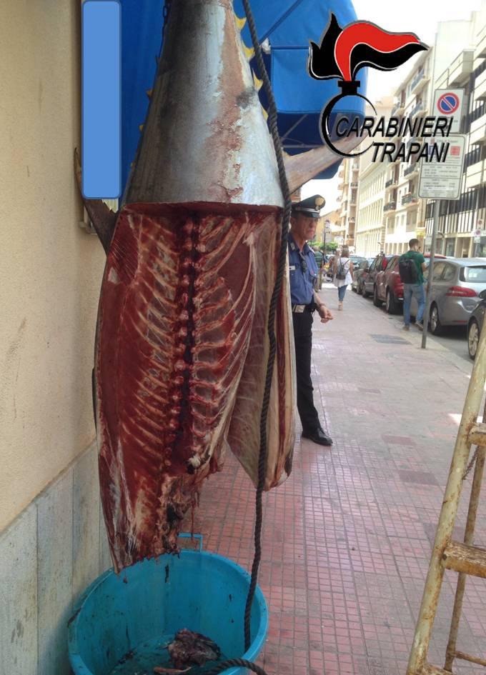 Trapani. Sequestrato tonno in cattivo stato di conservazione, due denunce