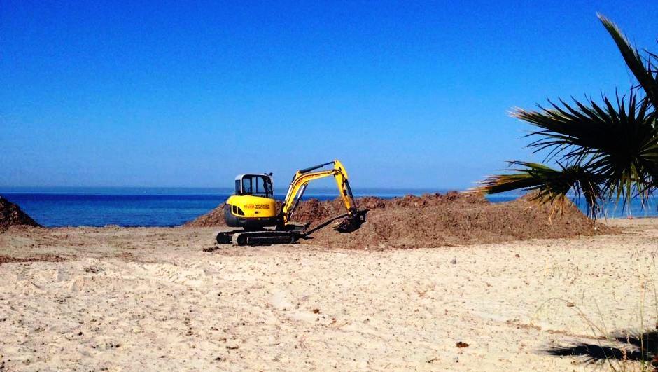 Mazara. Avviso pubblico per la rimozione delle alghe e pulizia dei litorali