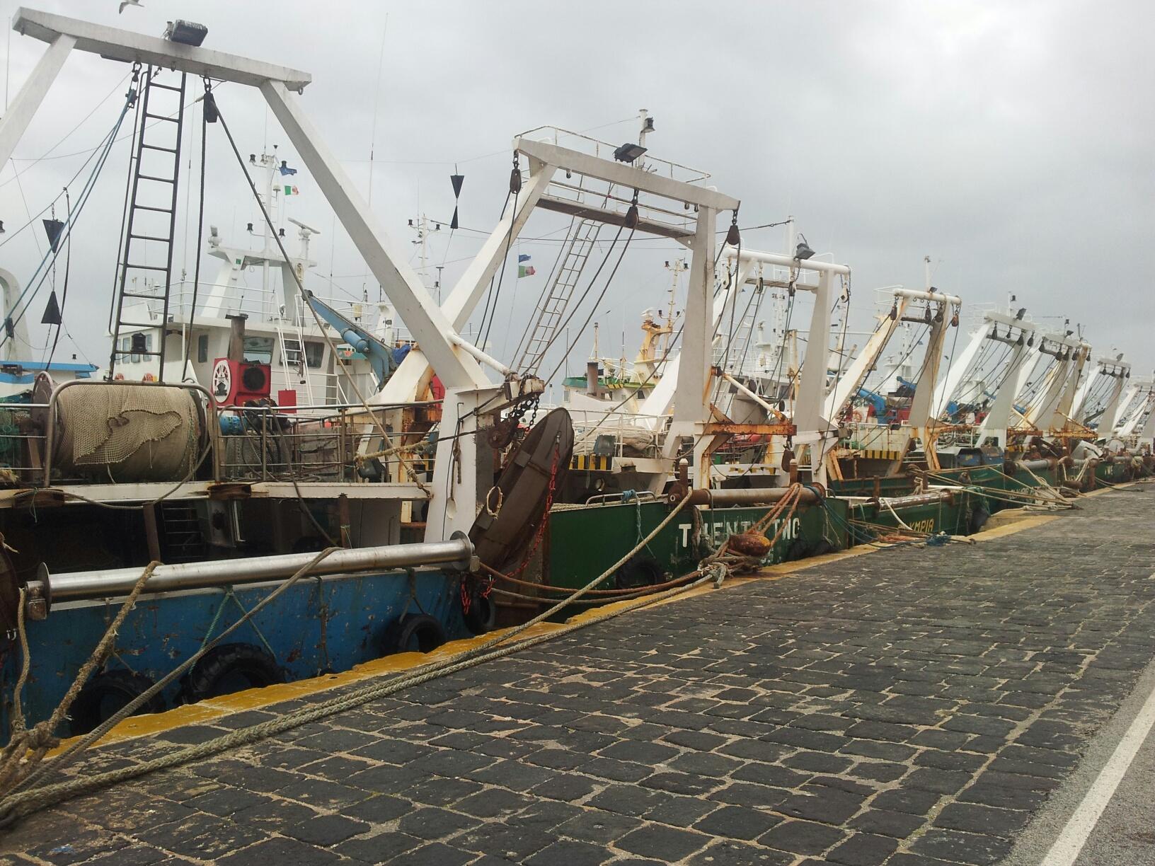L'OP della Pesca di Trapani interviene sul fermo pesca in Sicilia: