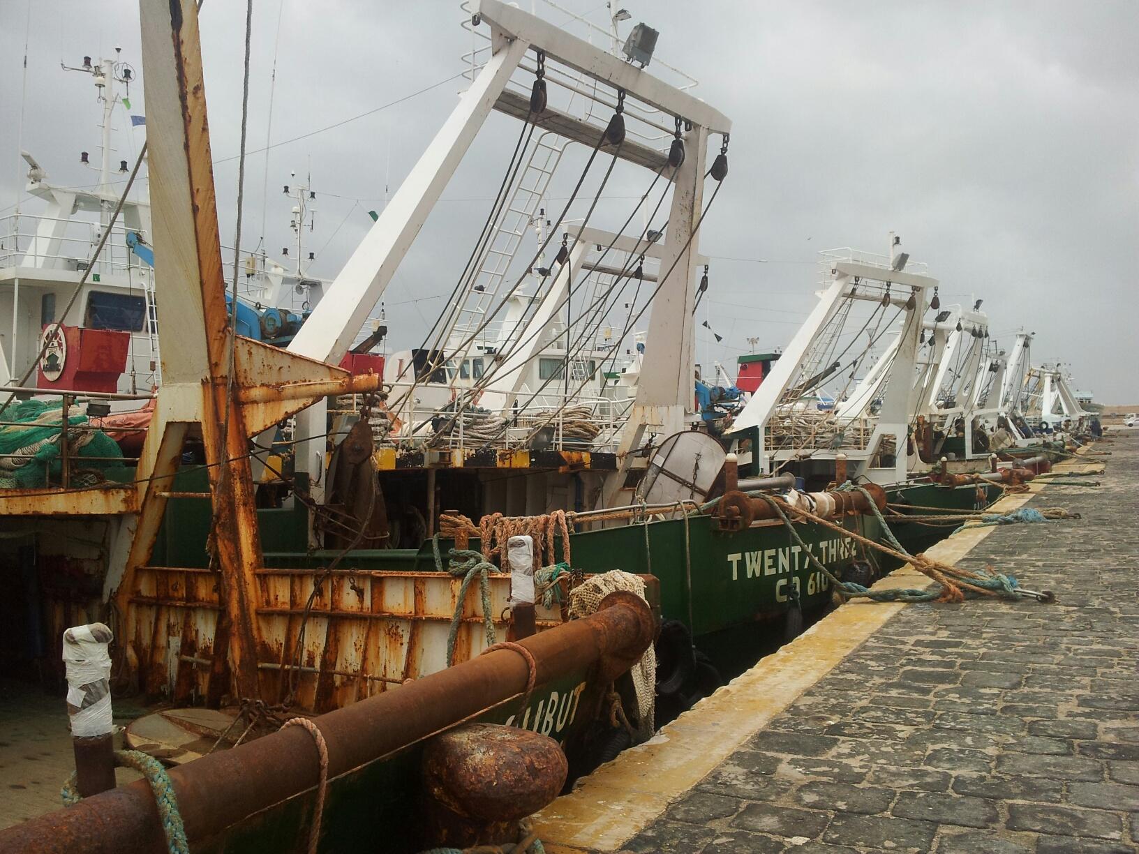 Mazara. Il 12 settembre incontro divulgativo: Contributi settore pesca – Bandi attivi