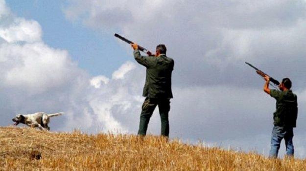 Caccia sospesa in Sicilia, il Tar accoglie il ricorso degli ambientalisti: chiusa fino all'1 ottobre