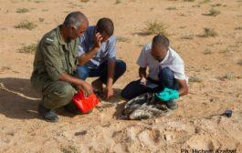 Anche Bianca, sorella di Clara (fucilata nelle campagne mazaresi) è morta in Tunisia