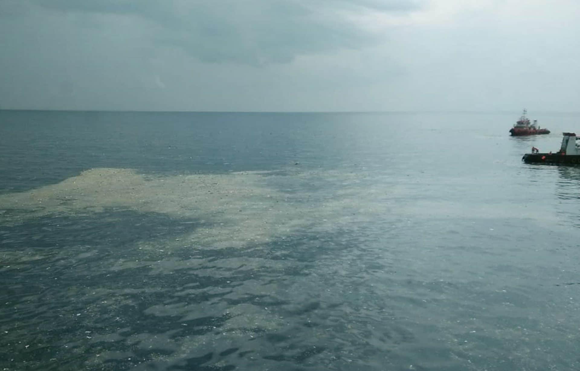 Indonesia, aereo precipita in mare dopo il decollo: a bordo 189 persone, una vittima è italiana