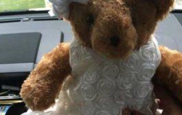Usa, rubano orsacchiotto con le ceneri della figlia defunta: la mamma lancia appello social per ritrovarlo