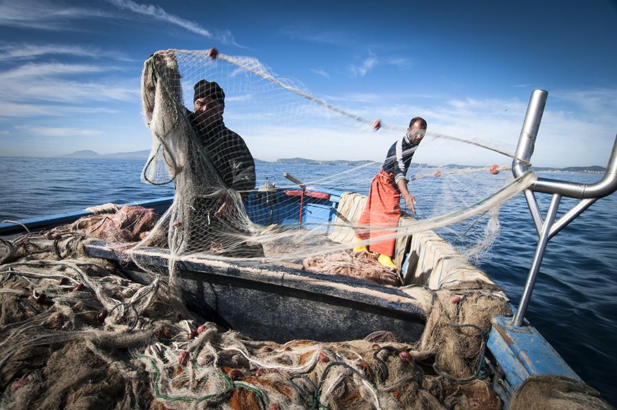 Pesca. UGL, la politica regolamenti pesca ricreativa