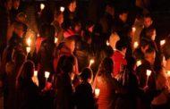 Mazara. Cani avvelenati: Venerdì 21 dicembre alle 17.30 organizzata una fiaccolata