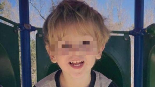 Usa, bimbo di 3 anni si perde nel bosco al gelo: riesce a sopravvivere