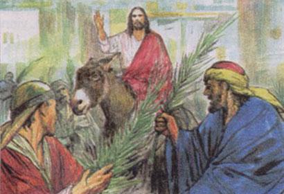 Domenica delle palme, il significato. Cosa dice il Vangelo