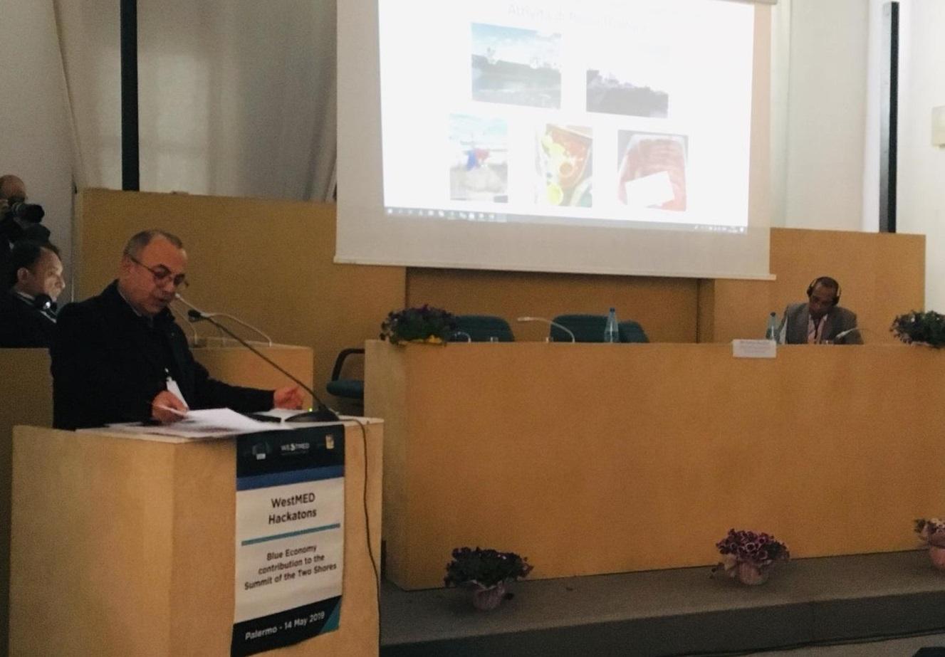 Mazara. Il Distretto della Pesca promuove l'Economia Blu nel Mediterraneo