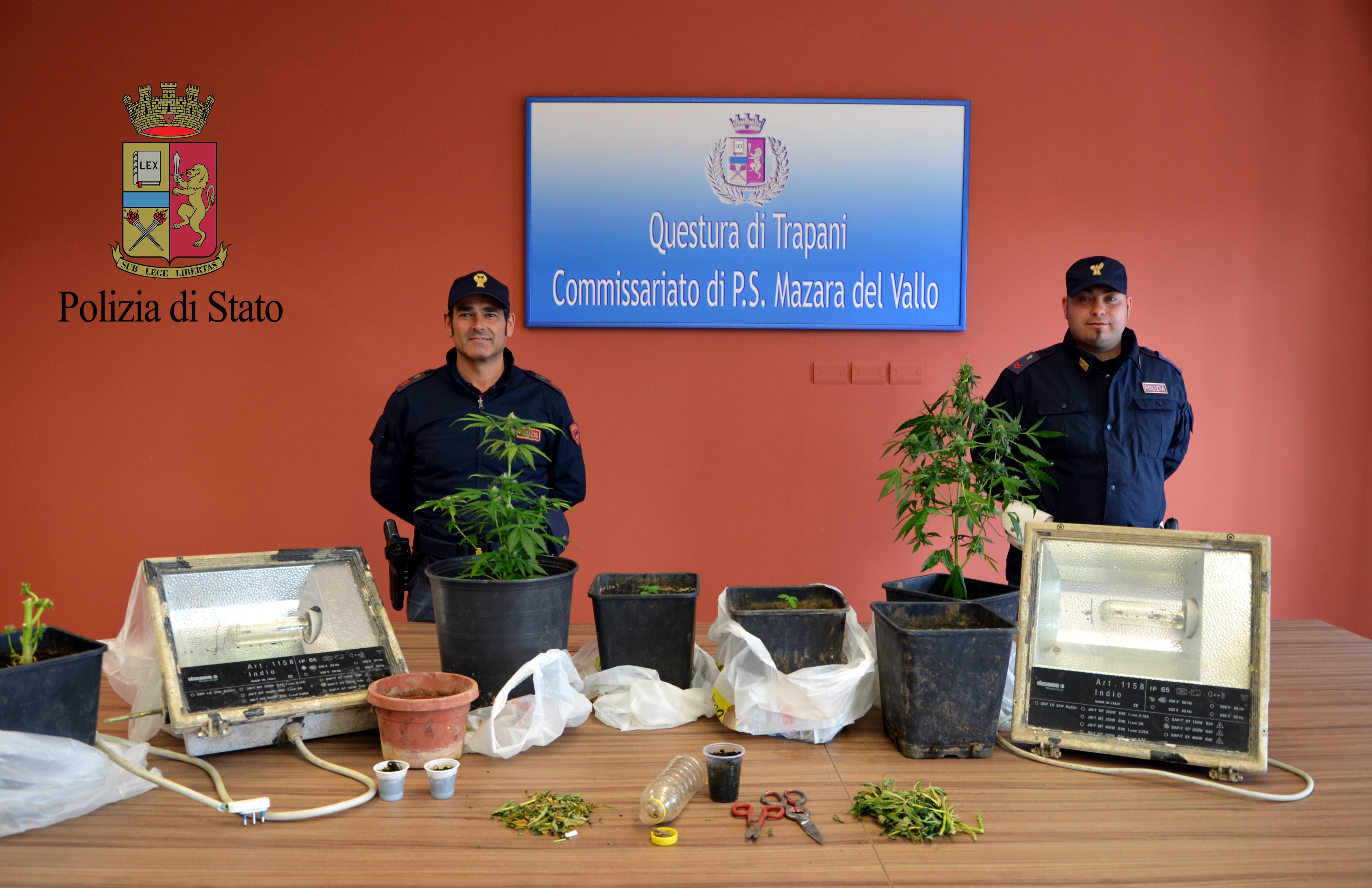 Mazara. Operazione antidroga con sequestro in appartamento di una serra con 6 piante di marijuana a carico di un cittadino mazarese