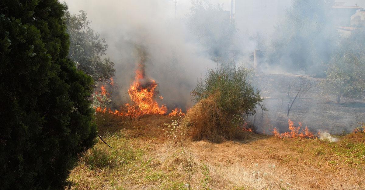 Mazara. Azione di prevenzione incendi ed eliminazione sterpaglie