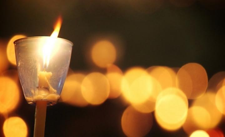 Una luce per non dimenticare: oggi Venerdì 14 Giugno la Fiaccolata in memoria dei randagi avvelenati a Mazara