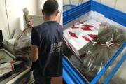"""Guardia Costiera di Mazara, SANZIONI E SEQUESTRI IN LOCALITA' """"TRE FONTANE"""""""
