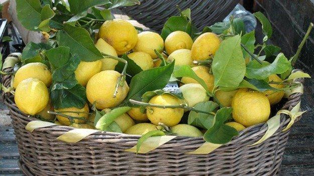Sequestrati limoni spagnoli: erano cancerogeni