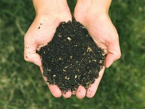 Mazara. Partecipazione Politica: C'è compostaggio e compostaggio...