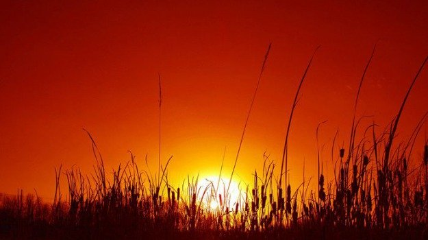 Incendi e ondate di calore in Sicilia, allerta rossa in provincia di Trapani