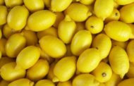 Limoni argentini infestati da un fungo, respinti due container arrivati in Sicilia