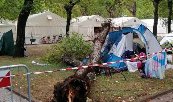 Cade un albero su una tenda in campeggio: morte due bambine