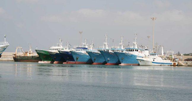 Sicilia, Dipartimento Regionale della Pesca: Contributi settore Trasformazione prodotti della pesca e dell'acquacoltura