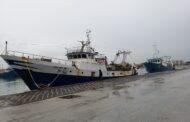 Mazara. Precisazioni della Capitaneria di Porto sulle sanzioni applicate al Motopesca Antartide