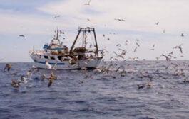 Peschereccio italiano di nuovo in zona pesca Libia
