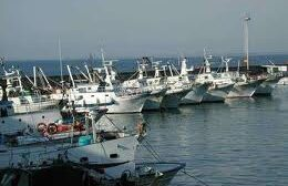 Stretta dell'Ue sulla pesca, a Mazara del Vallo una giornata di protesta